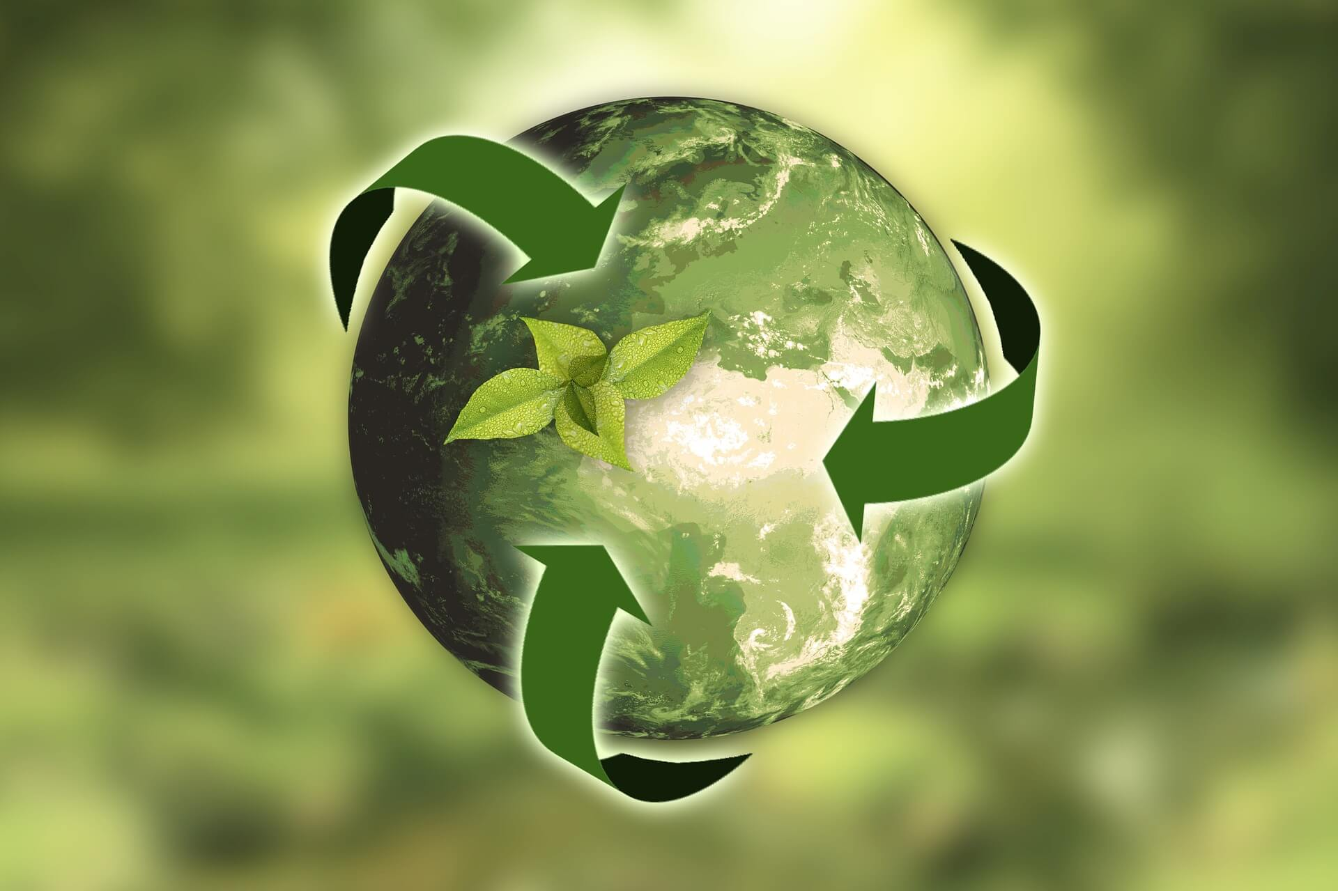 10 ways to make your business greener without breaking the bank